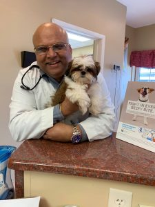 Veterinary Clinic in Butler, WI | Milwaukee Walk In Vet Clinic